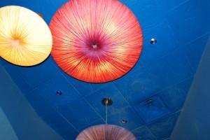 Coral Reef light fixtures